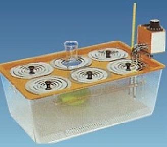 Bể điều nhiệt WB-11 V = 11 lít